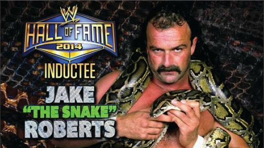 Jake the Snake teams up with Andy Bhatti